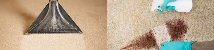 carpet cleaning services in Long Island